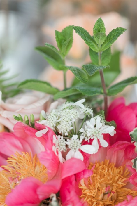Coral charm peonies & mint bouquet