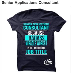 Microsoft Dynamics ERP Consultant