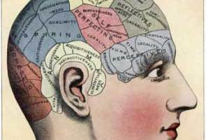 TKG KNOW: Neuroplasticity 101
