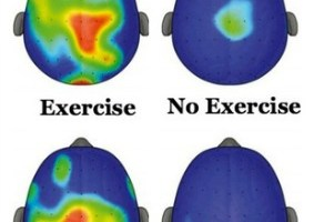 TKG LEARN: Exercise Is ADHD Medication (Whole Child Resource)