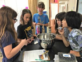 Community Newsletter-Week #34 Redwoods Class (Ages 9-11)