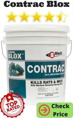 Best Mouse Poison
