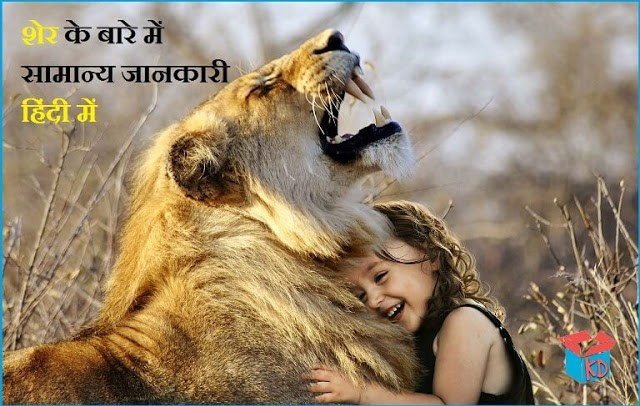 information about lion in hindi