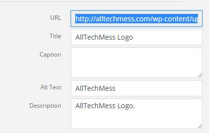 Add Logo To Genesis Framework step 4