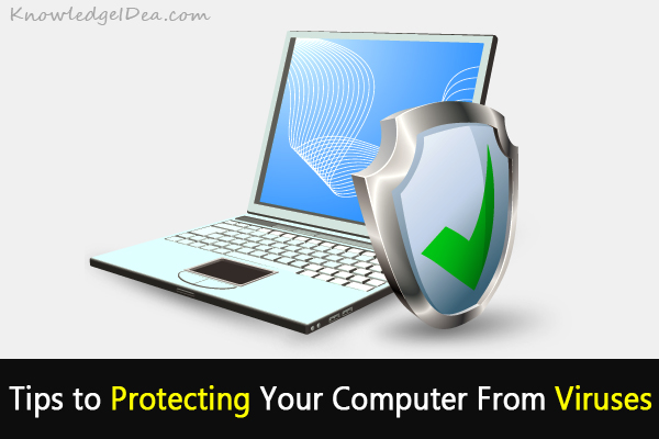 Experienced Tips to Protecting Your Computer From Viruses