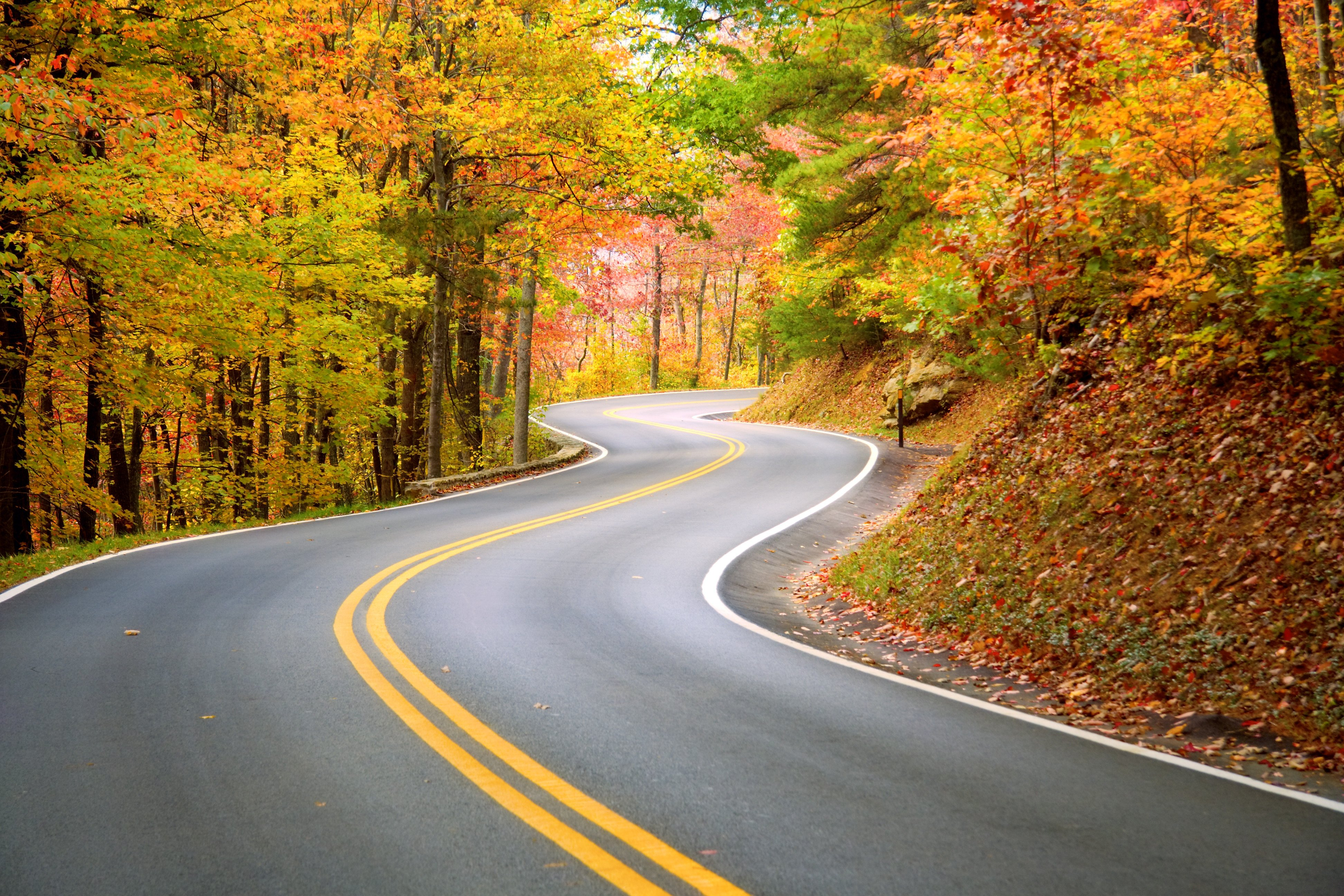 Take scenic route: the path from sales to product marketing