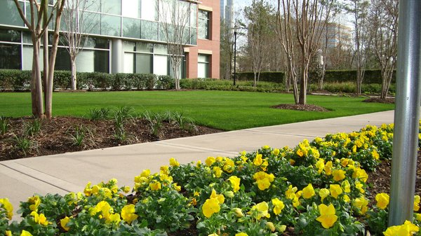 commercial landscaping seasons
