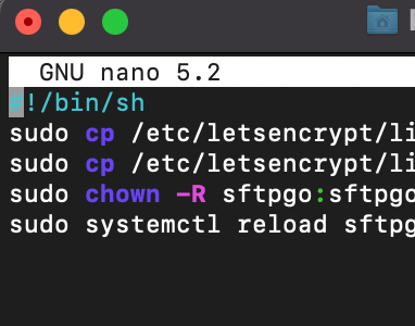 Image of the script pasted in nano