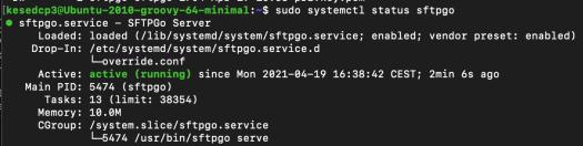 image of sftpgo status