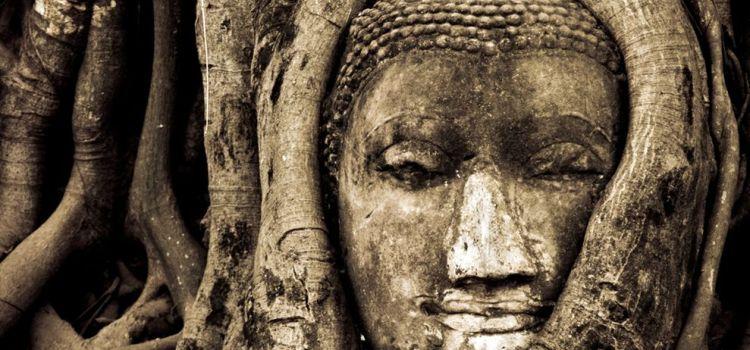 Buddha Head in Tree Ayutthaya, Thailand