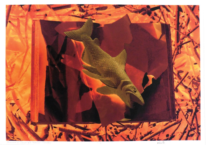 "Alexandra Haeseker ""Burning Sappho's Books: TINDER"" 22"" x 30"" UV Print on Arches Rag"