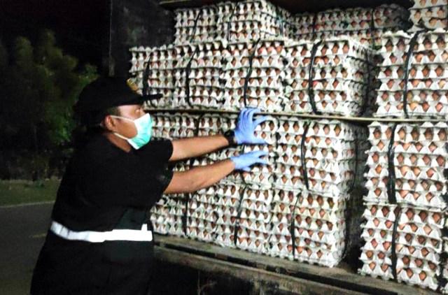 Telur Tanpa Dokumen