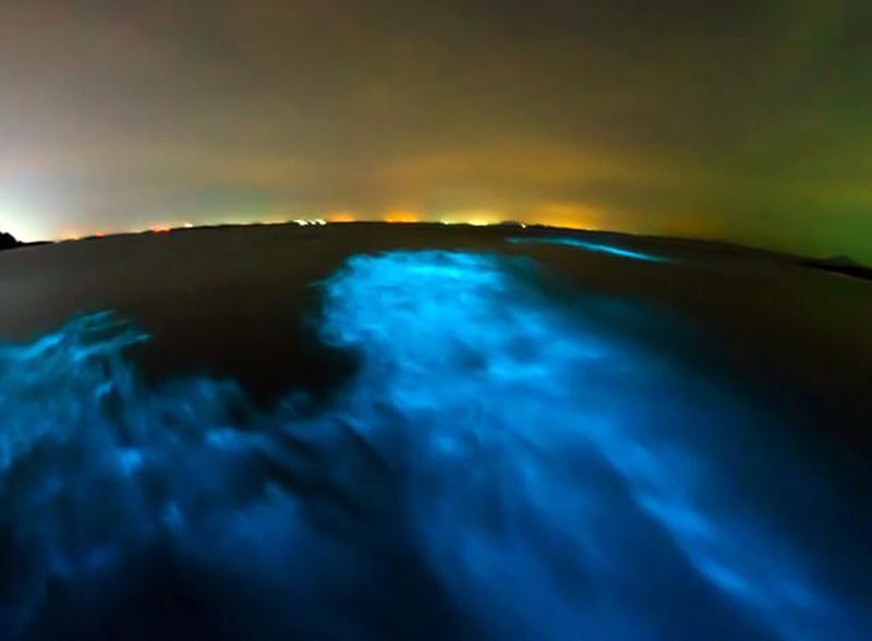Fenomena Air Laut Bercahaya di Perairan Selatan Jawa Tertangkap Satelit