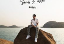 Download Count Me Out MP3 By Joeboy (Lyrics)