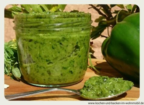 mojo verde www.kochen-und-backen-im-wohnmobil.de
