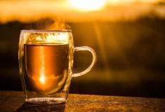 Mate Tee Test  - Die besten Mate Tees im Preisvergleich