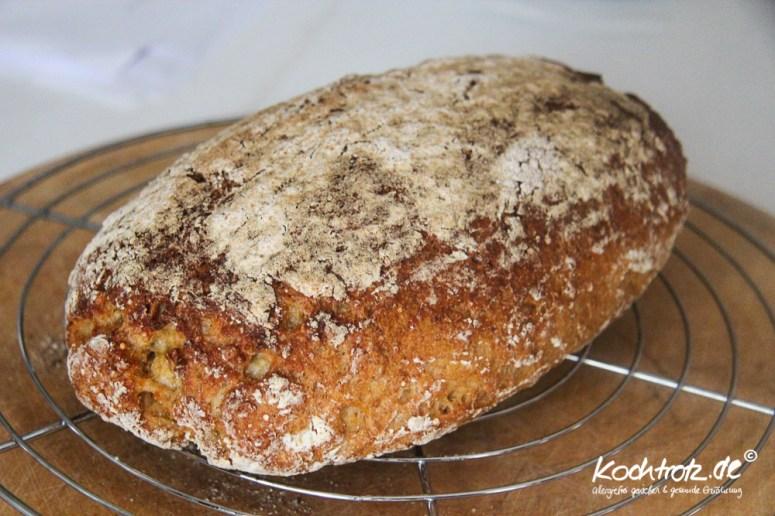 quinoa-brot-halb-halb-glutenfrei-rezept-kochtrotz-1-20
