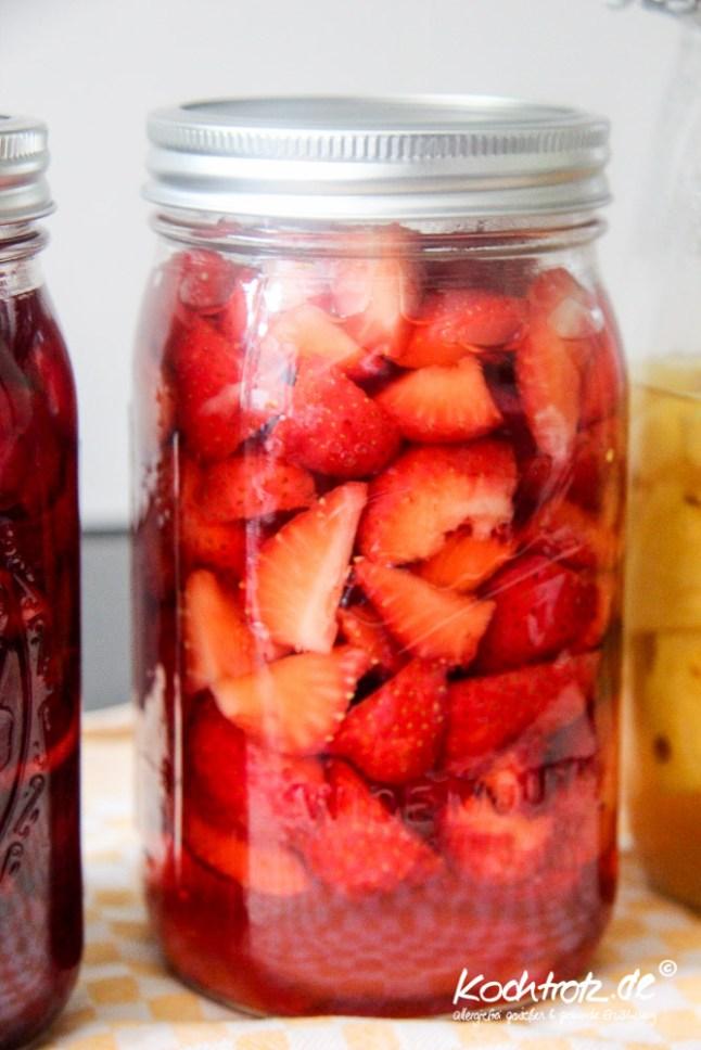 sharbah-shrub-sirup-fruechte-selbst-anstezen-kochtrotz-rezept-1-13