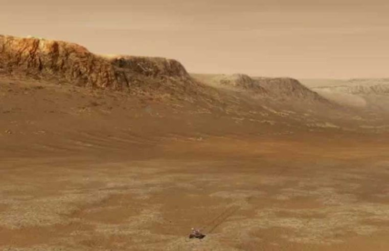 NASA says some Earth organisms could temporarily survive on Mars