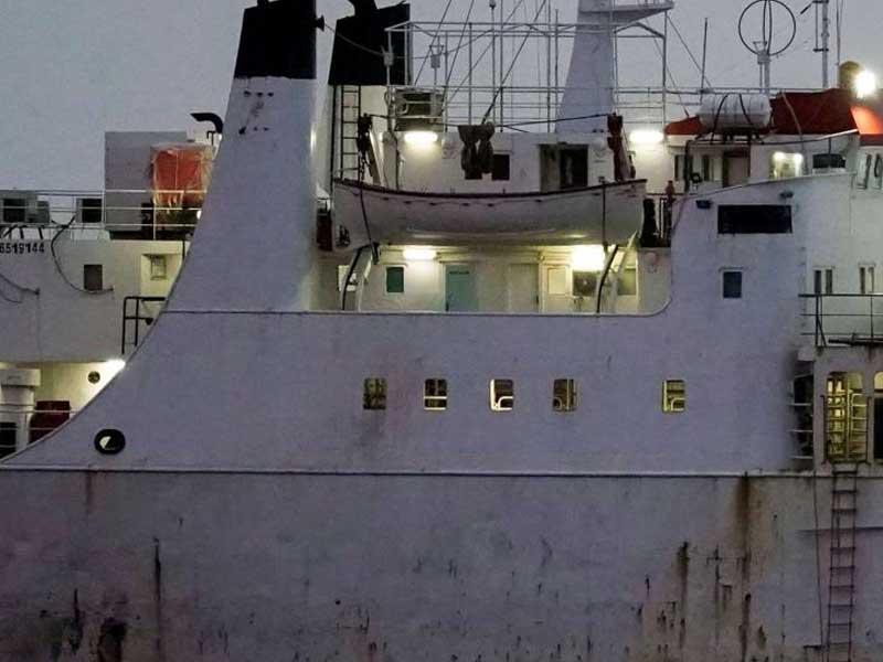 Spain orders culling of cattle on board Turkey-denied ship