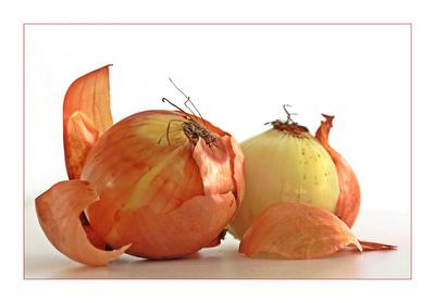 """Mit """"Öllisch"""" meint der Kölsche Zwiebeln. Bild: Birgit H / pixelio"""