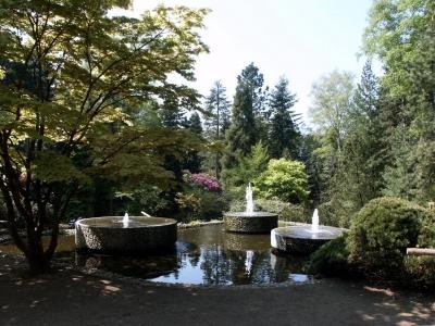 """Vielfalt der Bäume im """"Forstbotanischen Garten"""" in Rodenkirchen, Bild: Udo Sodeikat / pixelio.de"""