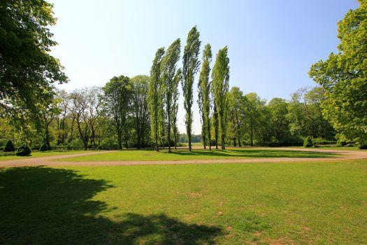 Der wunderschöne Beethovenpark in Sülz, Bild: Willy Horsch