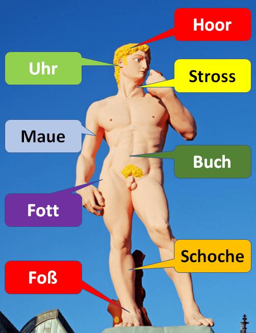 Körperteile auf Kölsch, Bild: Zoonar, Walter G. Allgöwer,