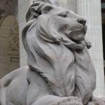 Ein erfüllter Traum: Besuch einer Public Library! Teil 5: New York