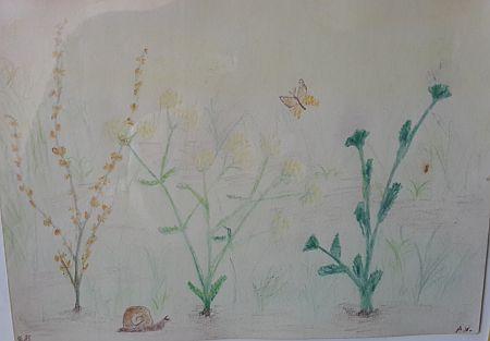 Zufallsbuch Der alte Garten Marie Luise Kaschnitz