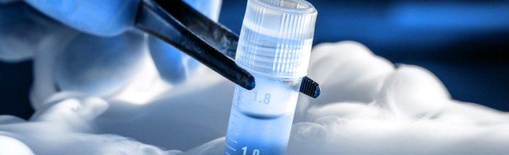 Biobank met borstkankerorganoïden maakt medicatie op maat mogelijk