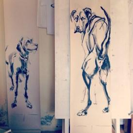 Dogs in Studio