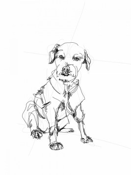 Portrait of dog Reno | digital drawing | prints available