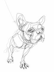 French Bulldog 01   Digital drawing, print available A4