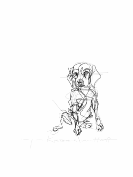 Sitting dog   digital drawing   prints available
