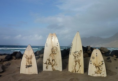 Paintings of Dogs on Surfboards Lanzarote Famara Beach