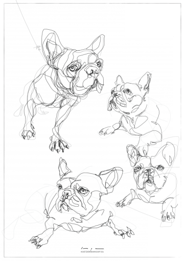 French Bulldogs   Digital drawing collage, print available A4 and A3