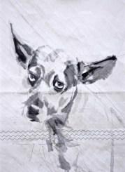 Dog on sail 01|Acrylic on sailcloth | 50x70 cm
