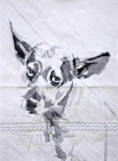 Dog on sail 01 Acrylic on sailcloth   50x70 cm