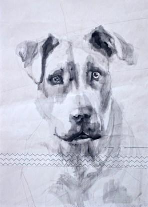 Dog on sail 02 Acrylic on sailcloth   50x70 cm