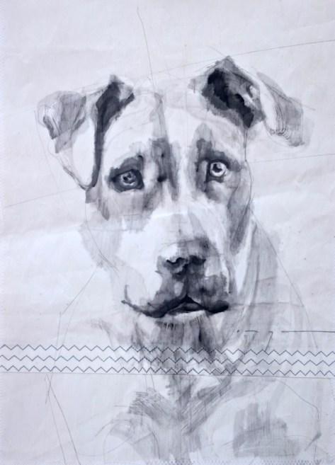 Dog on sail 02|Acrylic on sailcloth | 50x70 cm