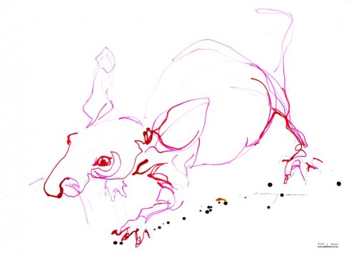 Red Mouse 01| Ink drawing on paper | A3 | SOLD