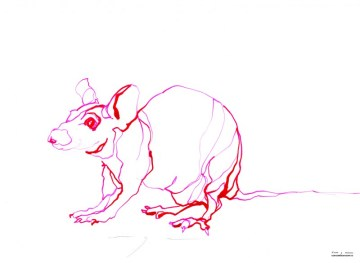 Red Mouse 2 | Ink drawing on paper | A3