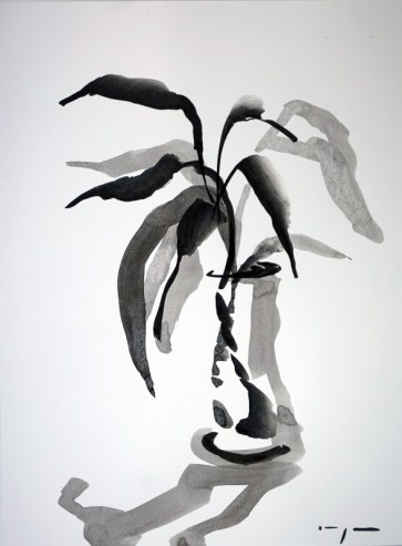 Lucky Bamboo 01|Ink on paper | A3