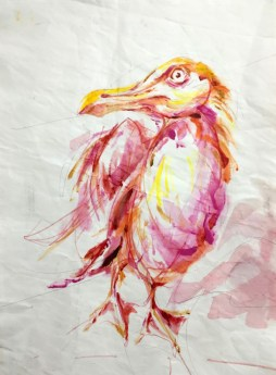 Seagull in Pinks   Acrylic paint on sail   50x70 cm