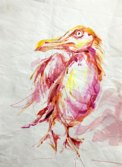 Seagull in Pinks | Acrylic paint on sail | 50x70 cm