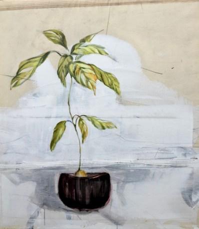 Avodaco plant in black pot | acrylic on sailcloth | 80x90 cm