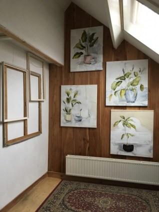 Paintings of plants on studio wall