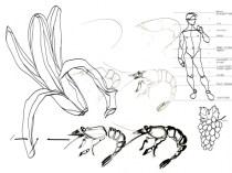 Tekenles Inge Koetzier van Hooff   Creativity is the new gold   Drawing class