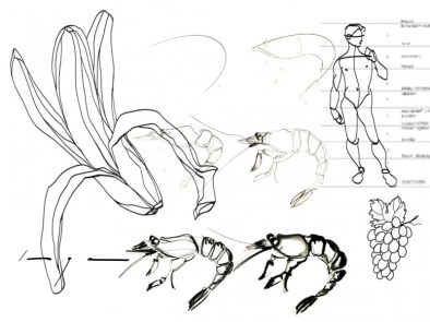 Tekenles Inge Koetzier van Hooff | Creativity is the new gold | Drawing class